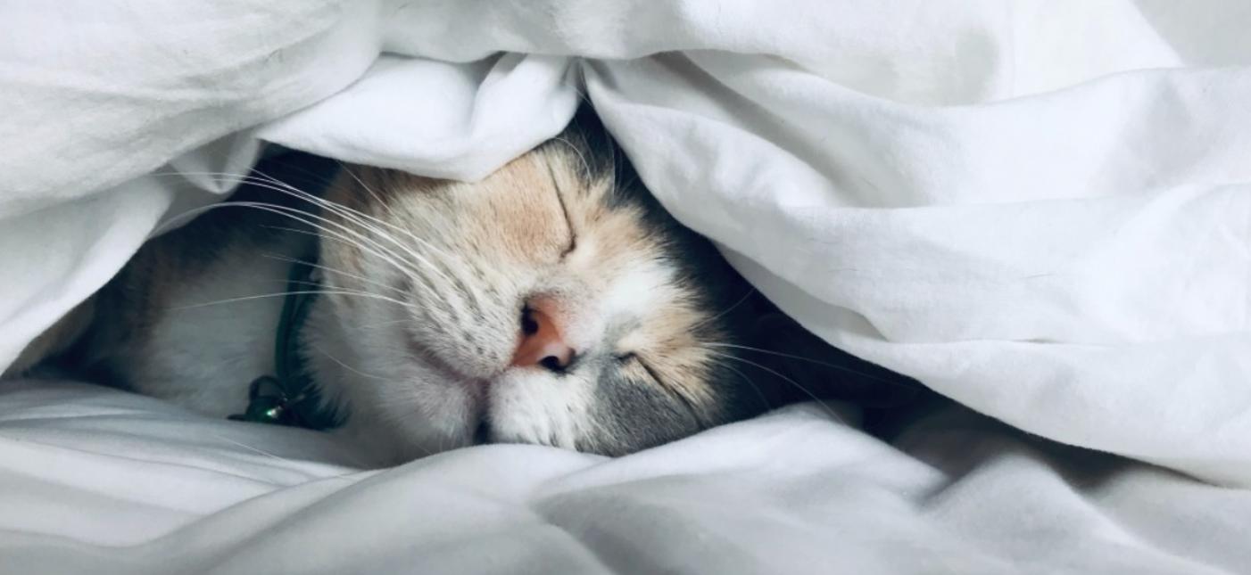 Światowy Dzień Snu – wysypiasz się czy tylko śpisz?